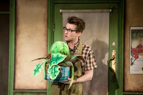 Ben Stott in Little Shop of Horrors at Salisbury Playhouse - credit Richard Davenport (2)