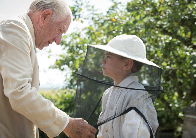 The Bee-keepers Tale: Mr Holmes Curious Odyssey