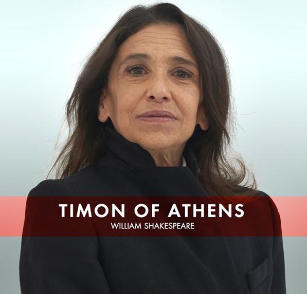 Timon 1